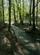 Drahanský potok
