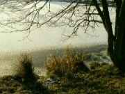 zimní zátiší