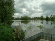 Hliněný rybník
