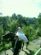 Nevěsta na kůň-Křivoklát
