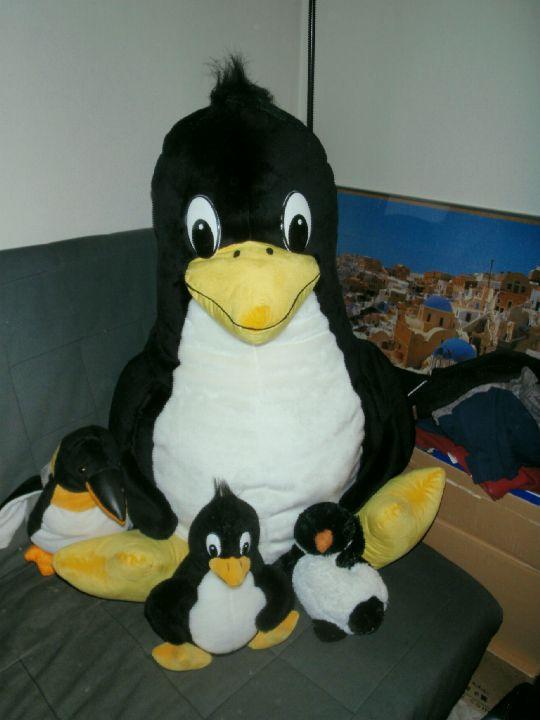 Rodina tučňáků