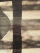 Stín dřeva: Václav Kovalčík, Zlín