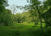 Údolí Šáreckého potoka