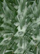 Juka vláknitá počítačová malba 6