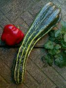 Zátiší tykve a papriky