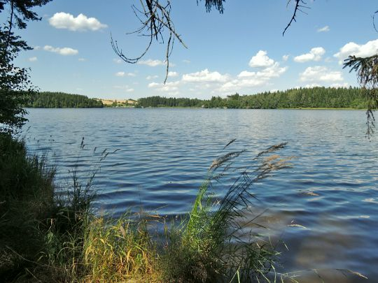 Medlovský rybník
