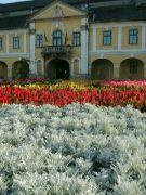Széchenyiho náměstí