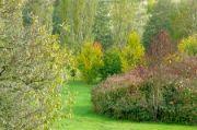 park plný barev