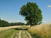 Léto v Podkrkonoší
