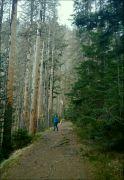 šumavské vodopády 35