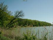 Jakubský rybník