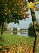 Podzim u Labe