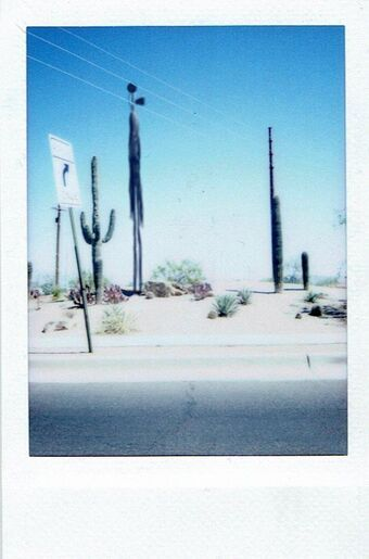 Siren Head v arizonské poušti