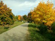 Cestou do horní zahrady