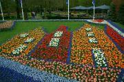 Květinový obraz
