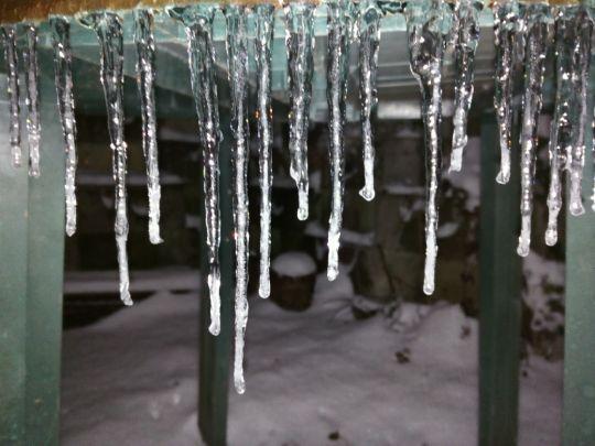 Zimní zahrada v noci 8. února 2021