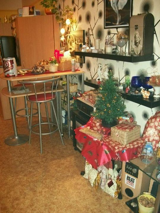 Vánoce 2012 002