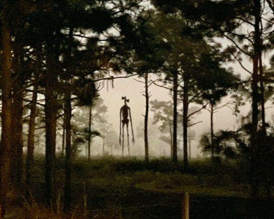 Siren Head v lese