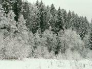 zimní krajka